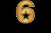 GY6highreslogotransparentcopy (3)-150.png