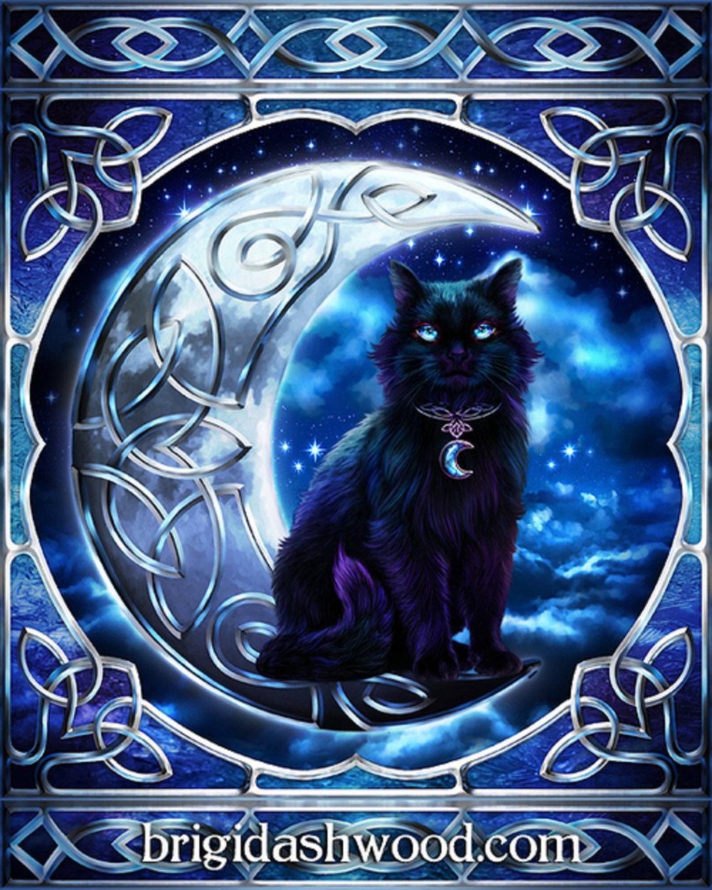 Midnight Moon Black Cat