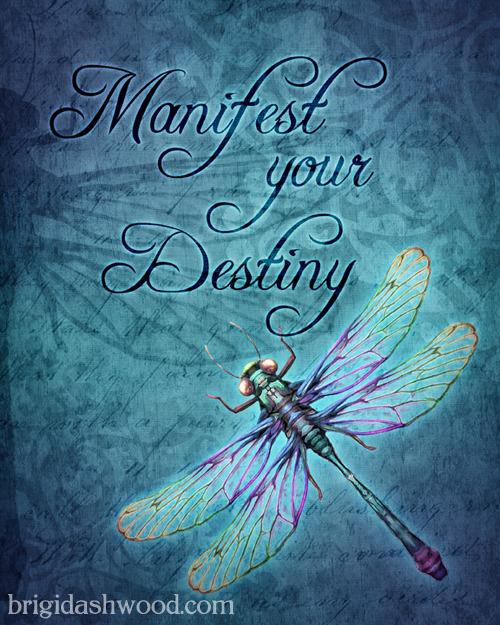 Manifest Dragonfly