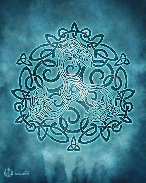 Celtic Dolphins Knotwork