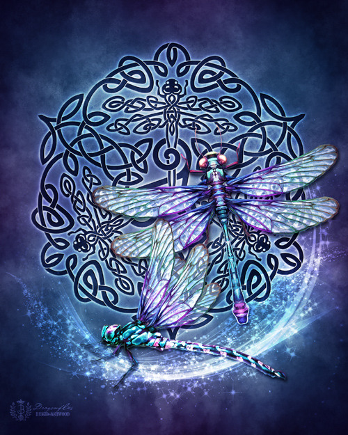 Celtic Dragonflies