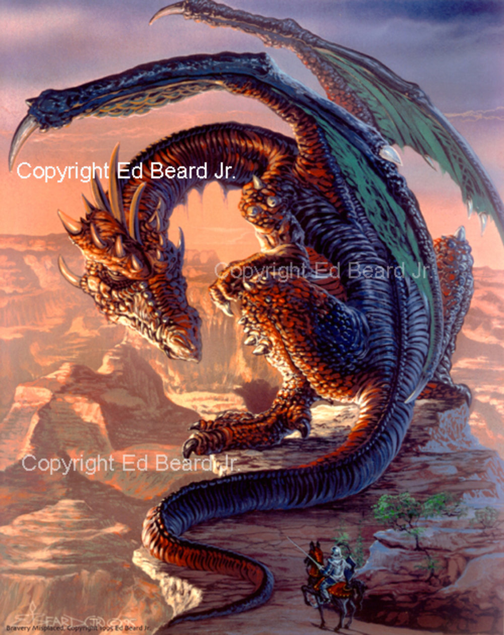 Bravery Misplaced