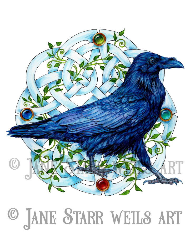 Raven with Four Direction Knotwork