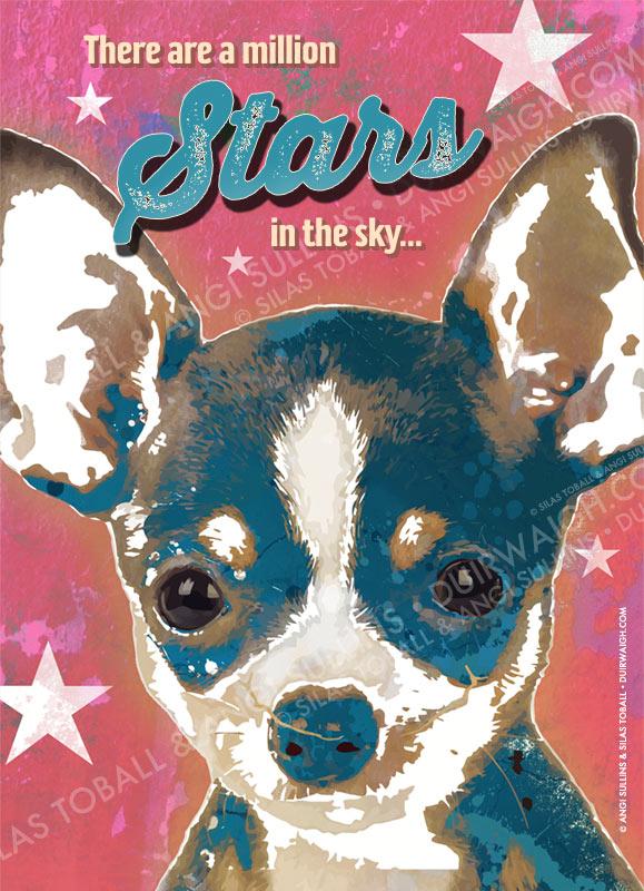 Million Stars Dog
