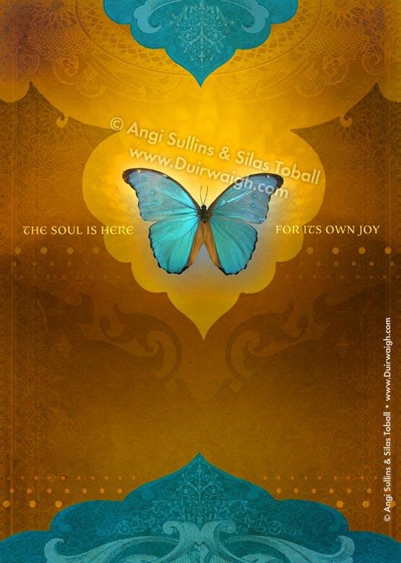 Souls Joy