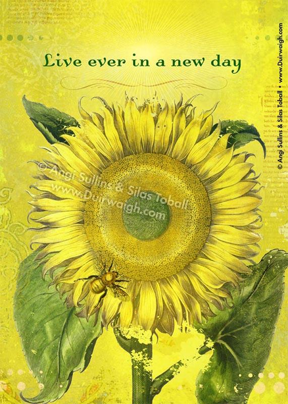 Live Ever