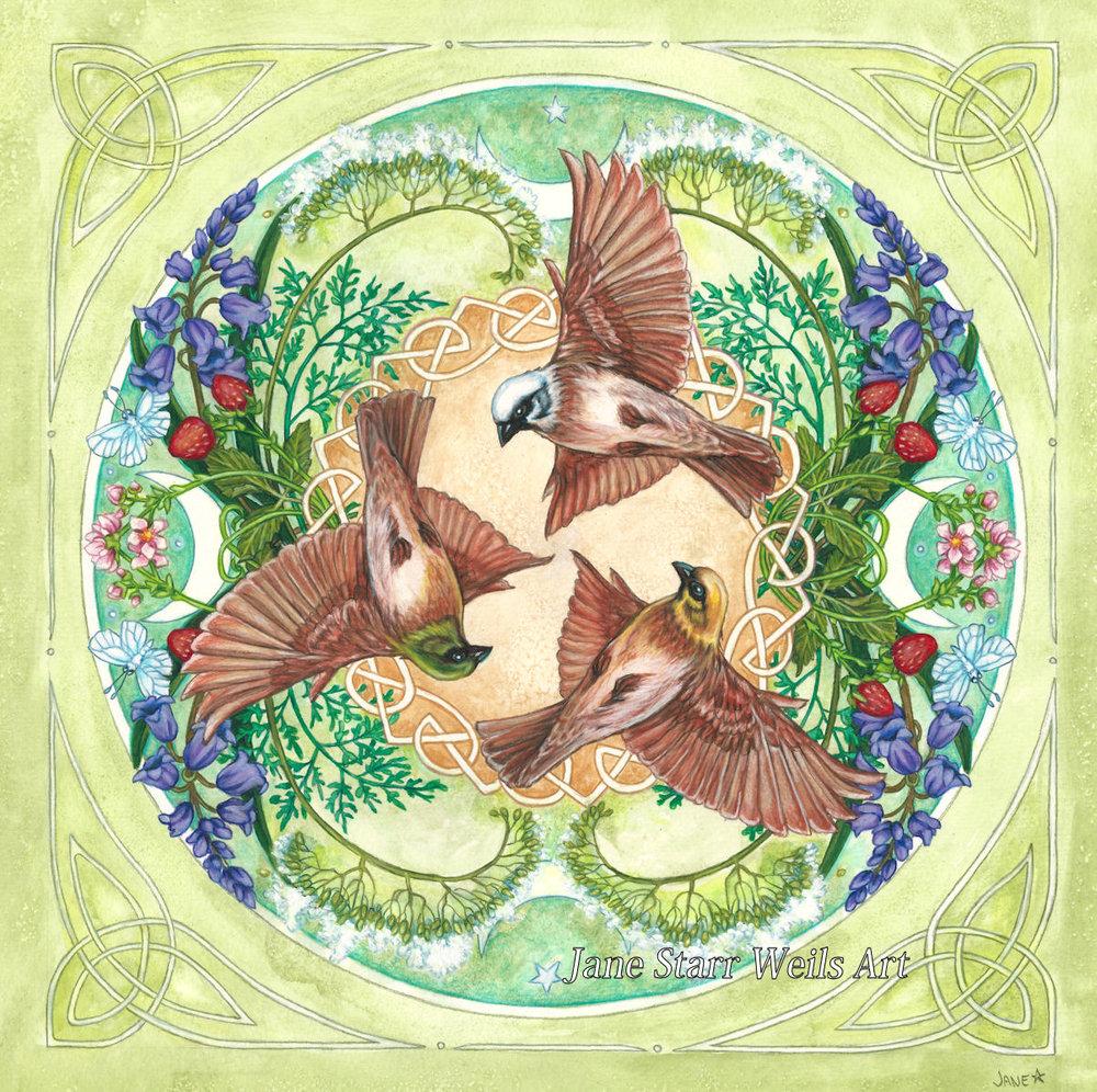 Rhiannon's Birds