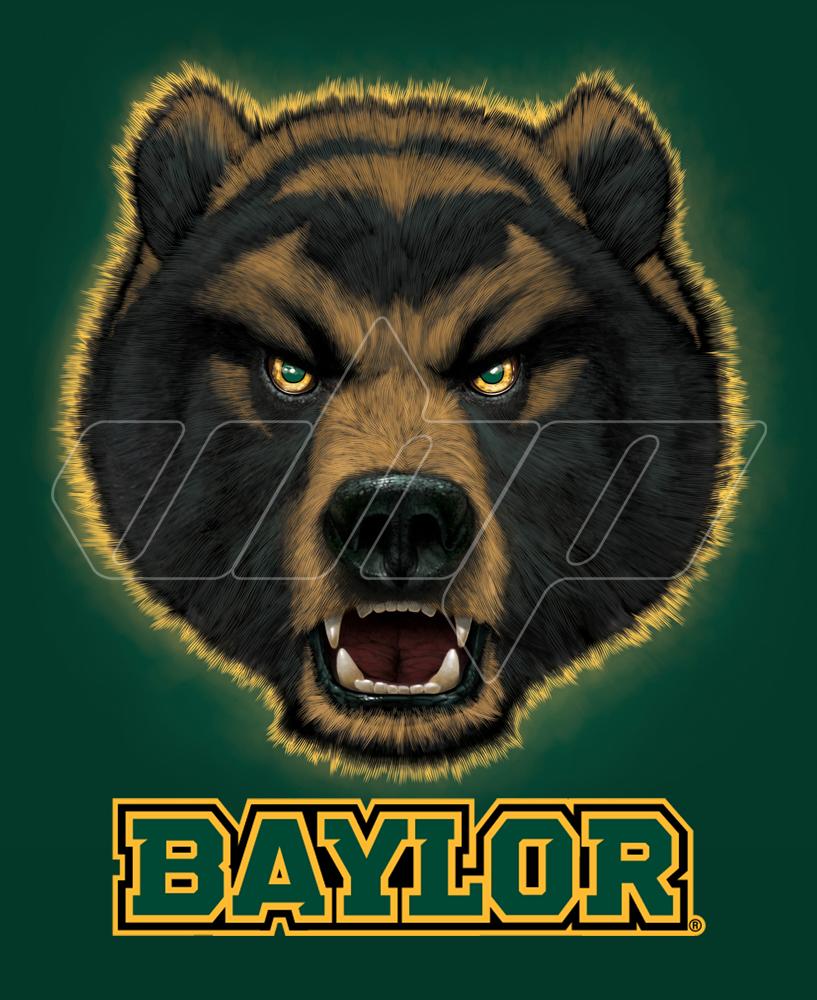 Baylor Bear.jpg