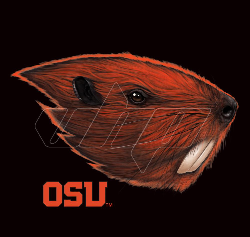 Oregon Beavers.jpg