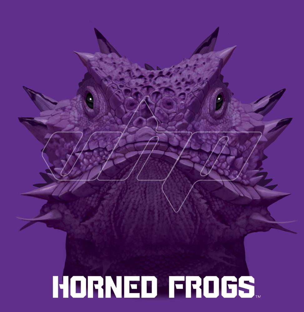 Texas Christian University Horned frog.jpg