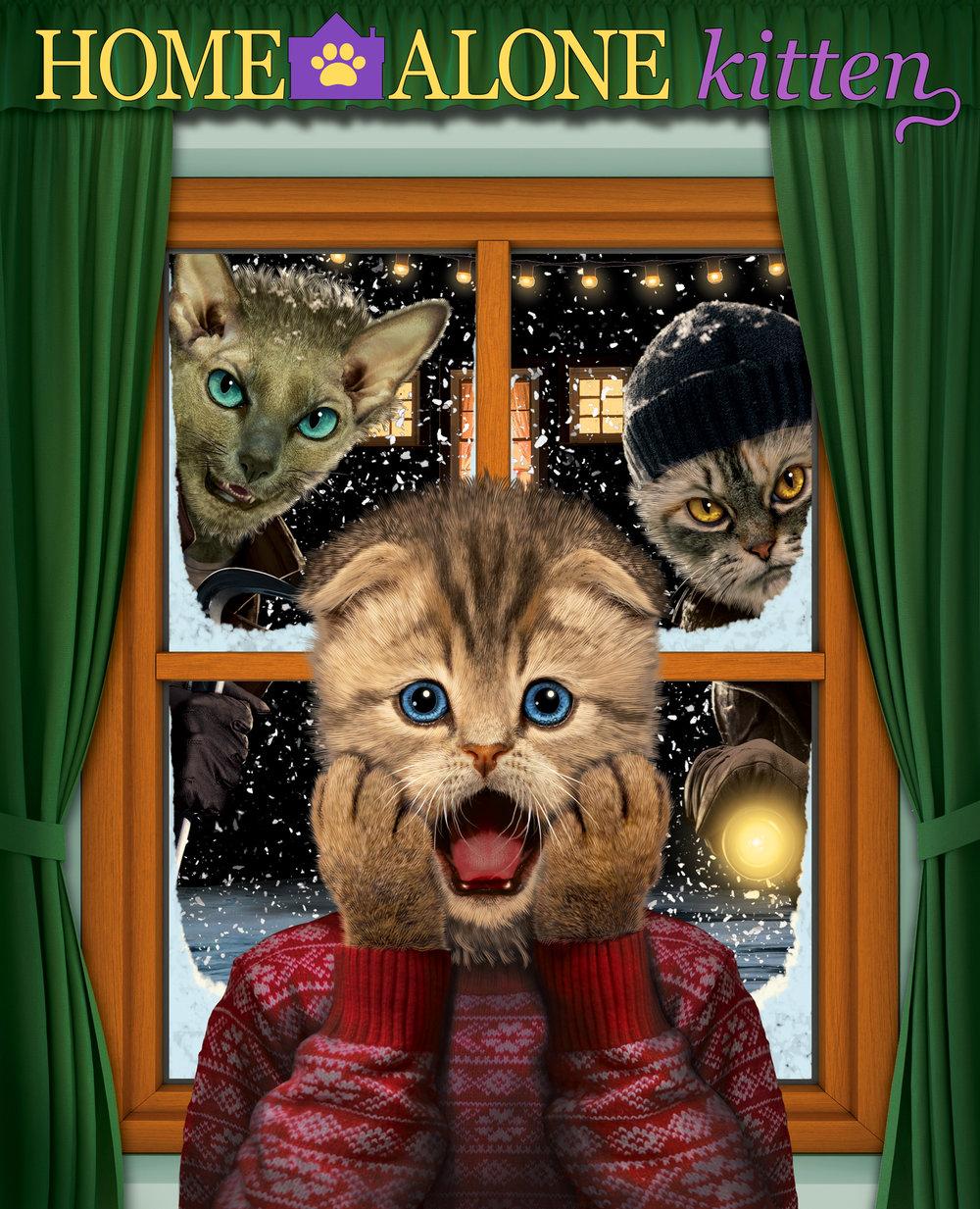 Home Alone Kitten.jpg