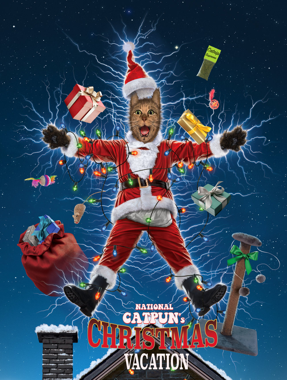 National catpun's Christmas Vacation version 2.jpg