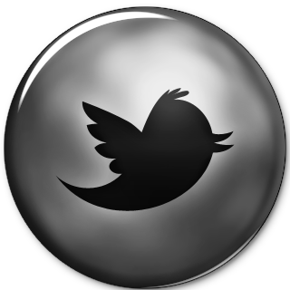 new-twitter-bird.png