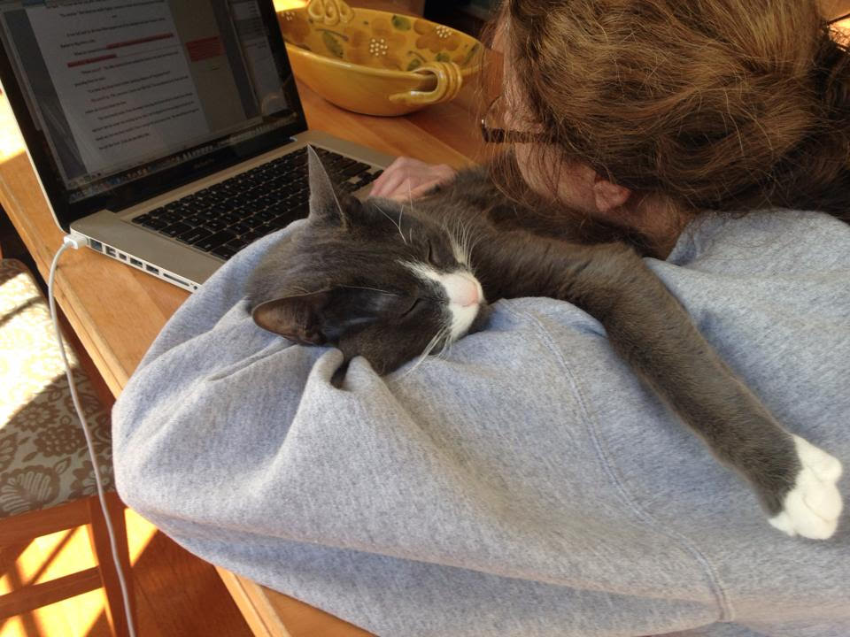 Writing with cat.