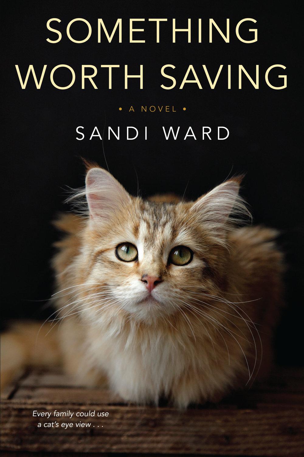 sandi ward something worth saving