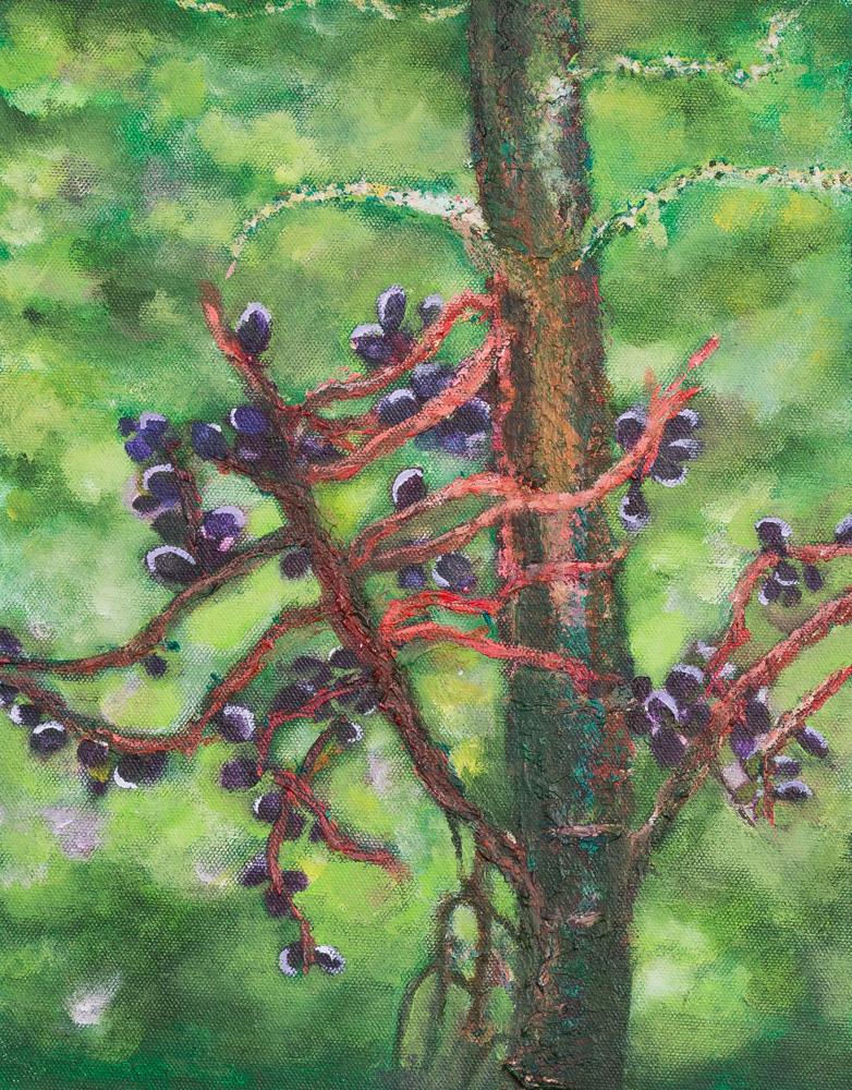 """Wild Berries Acrylic 9""""x12"""" $140"""