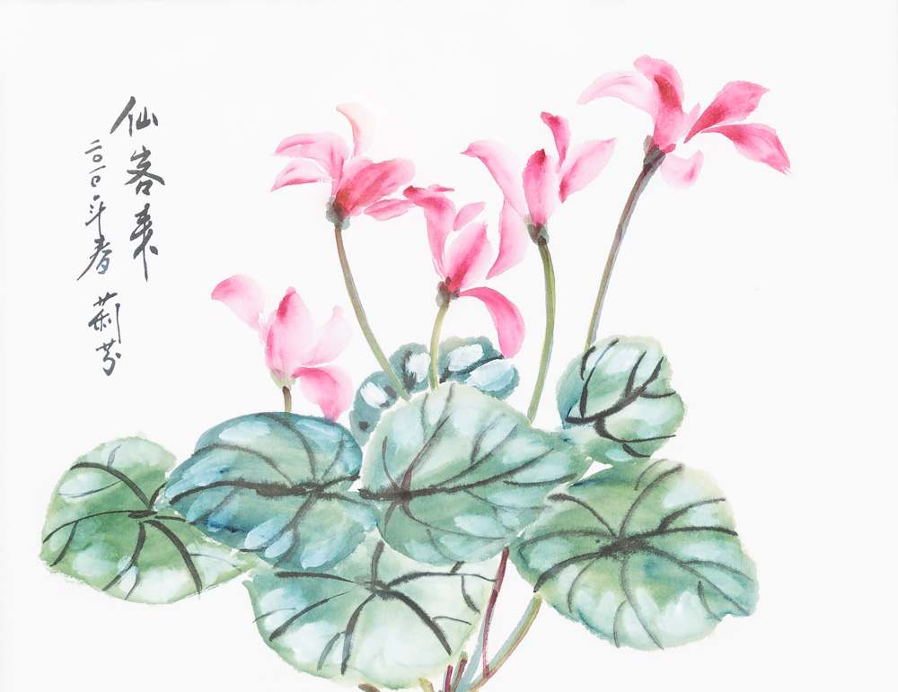 """Cyclamen Flower Water Color - Chinese Brush Paintiing 11"""" x 14"""" - Framed $180"""