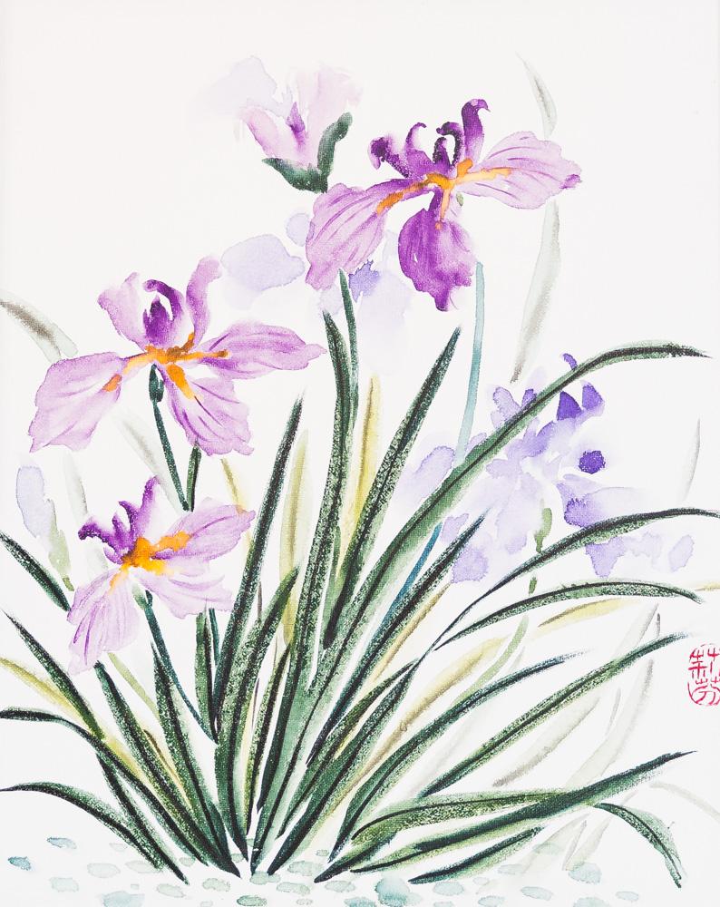 """Purple Irises Water Colour 16"""" x 20"""" Canvas $280"""