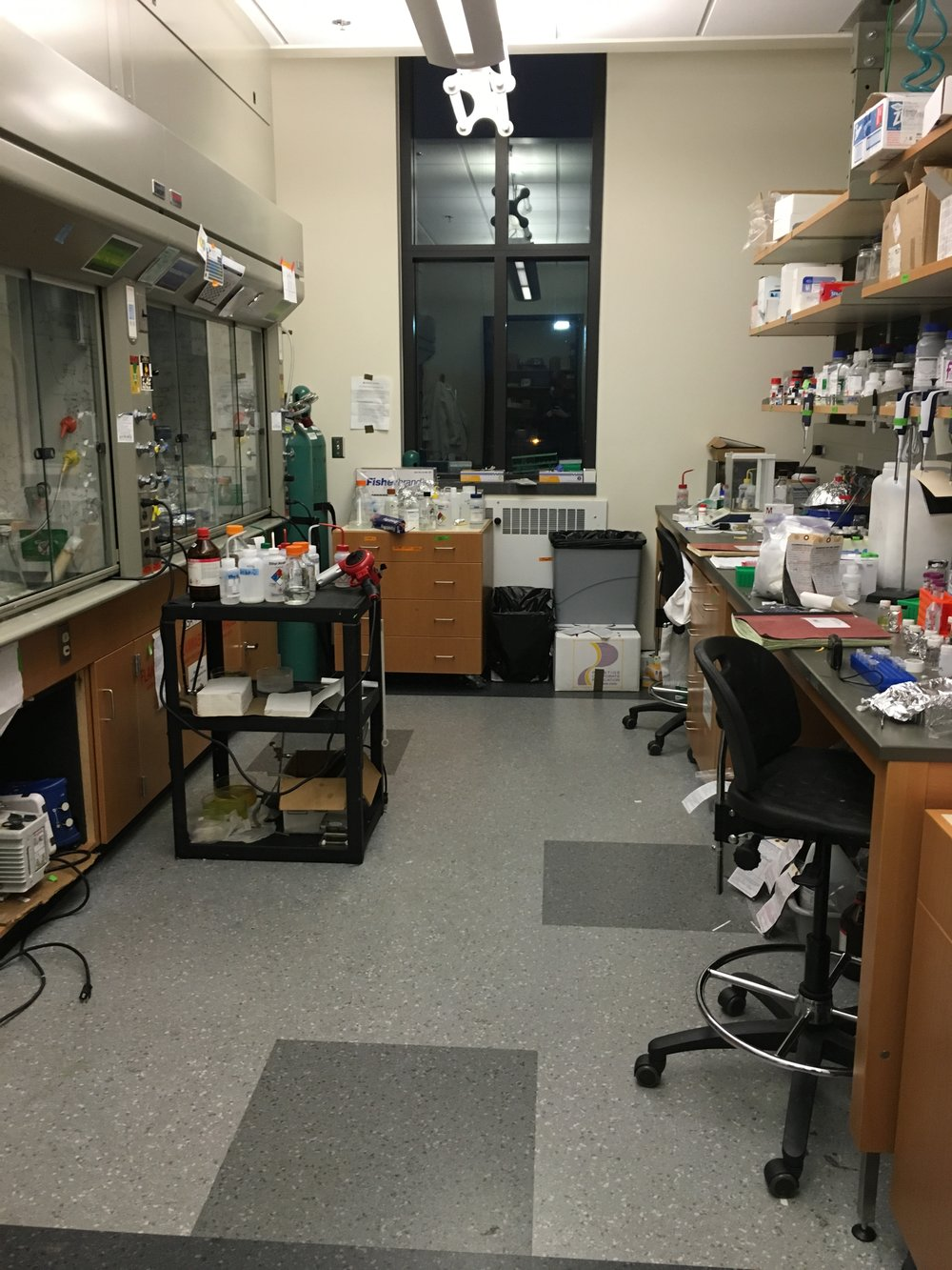 I practically lived in this area for a while – we moved to a nicer lab after a year.