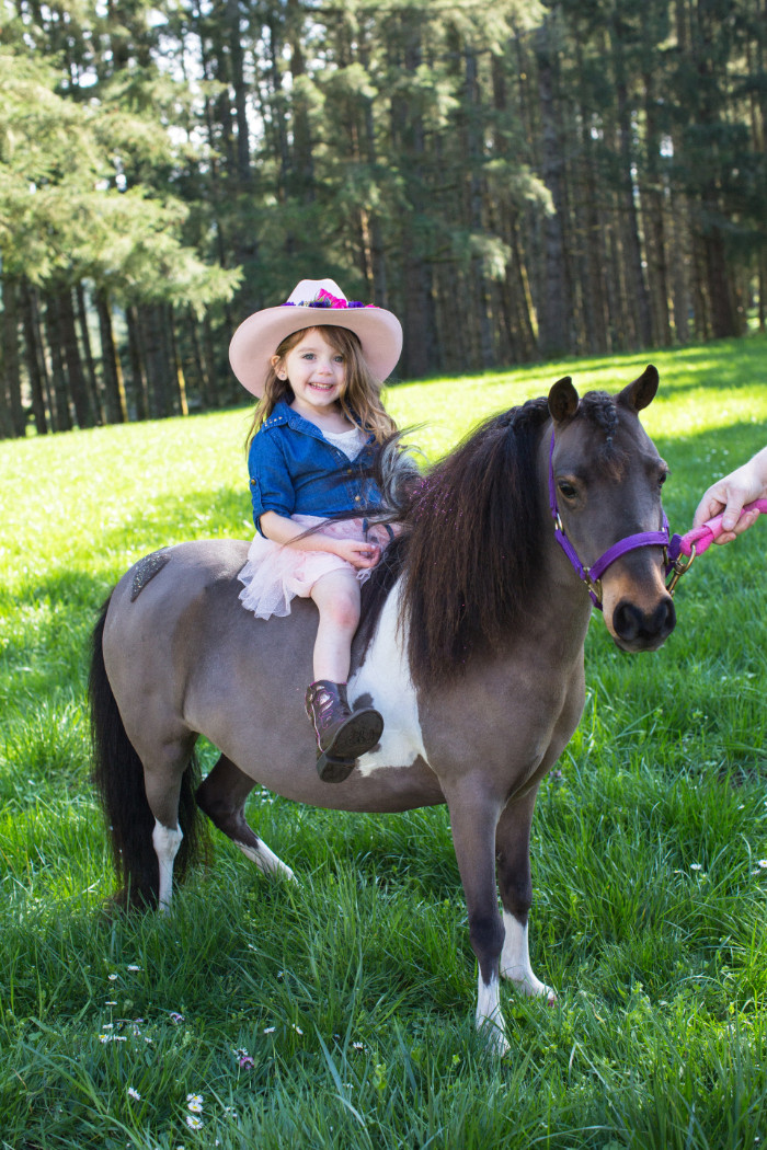 mini horse cowgirl party birthday