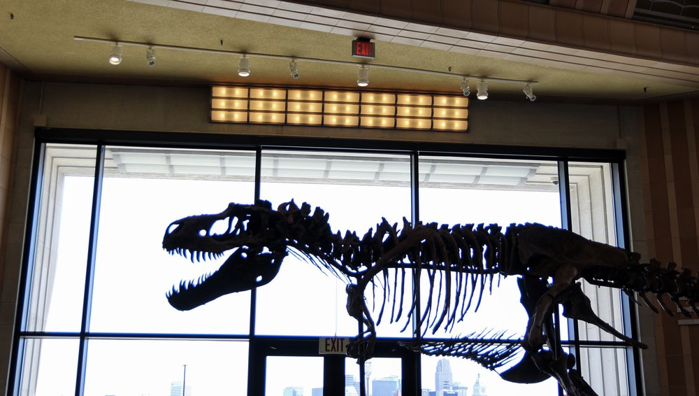 dinosaur cincinnati museum center.jpeg