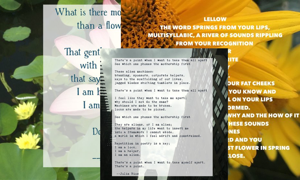 Collaborative Photo Poems - Saturday, September 9, 201710 am - 6 pm