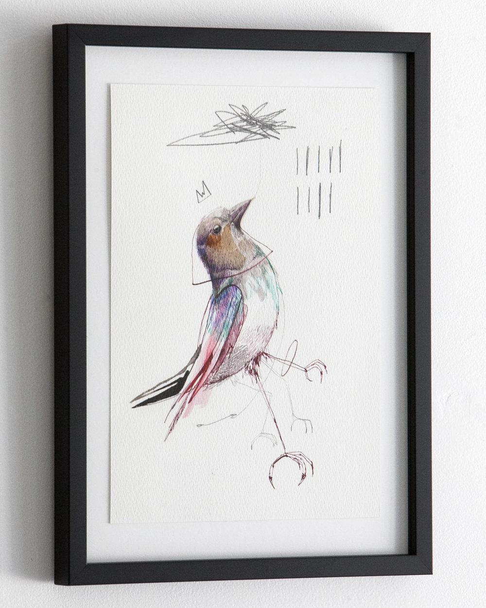 c_bird_13_3.jpg