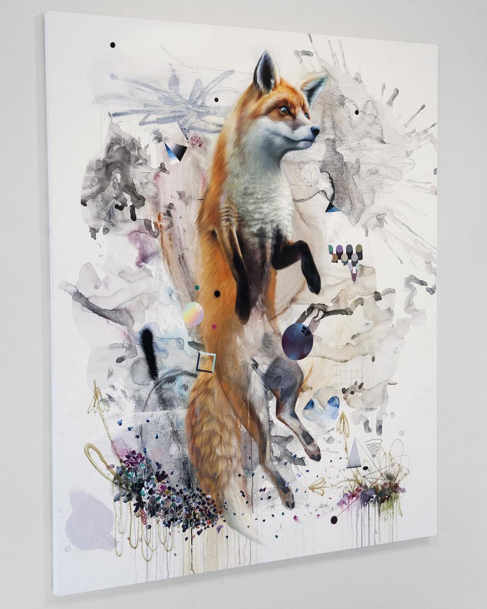 c_sa_fox5.jpg