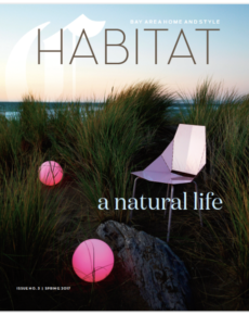 Allison Caccoma Cover Habitat .png