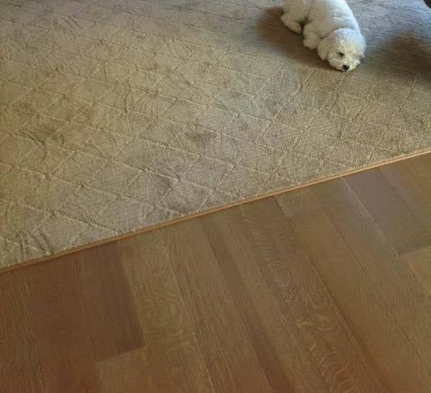 binding area rug.jpg