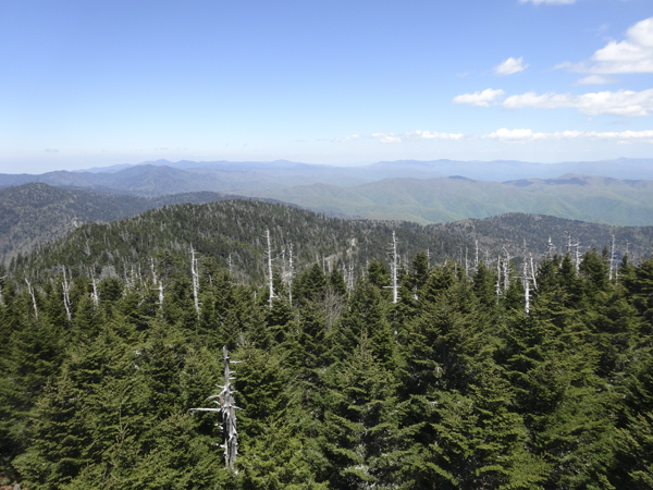 Clingmans Dome - View of Mt Mitchell