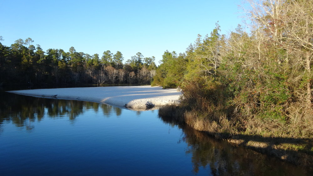 Blackwater River with it's sugar sand bottom
