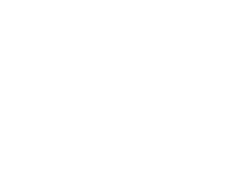 sarahthebarge.com invisible girls header.png