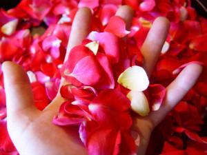 flowerhand2.jpg