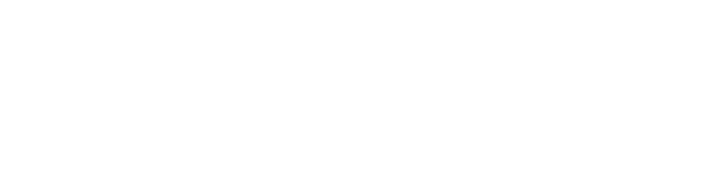 sarahthebarge.com find wellness header.png