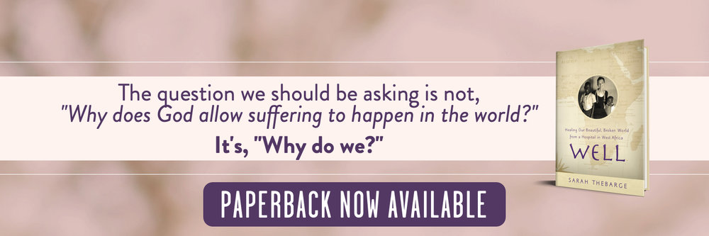 well promo banner paperback - the question....jpg