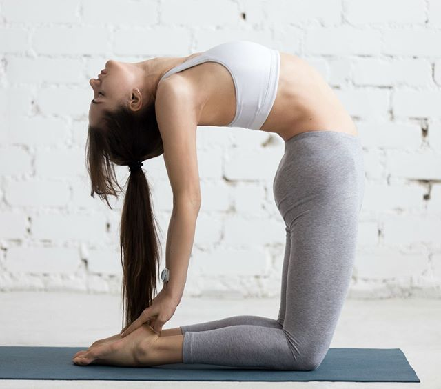 Ustrasana, or Camel Pose is a deep back-bending yoga asana that has many benefits: 🙏 It stretches the entire front of the body, the ankles, thighs and groins, abdomen and chest, and throat 🙏 It also stretches the deep hip flexors (psoas) 🙏 It strengthens back muscles and Improves posture 🙏 It stimulates the organs of the abdomen and neck -  #yoga #yogi #yogaeverydamnday #love #yogainspiration #igyoga #yogapractice #yogalove #yogajourney #yogateacher #namaste #spiritualgangster #yogagram #liveinthesunshine #mindfulliving #vinyasa  #poweryoga