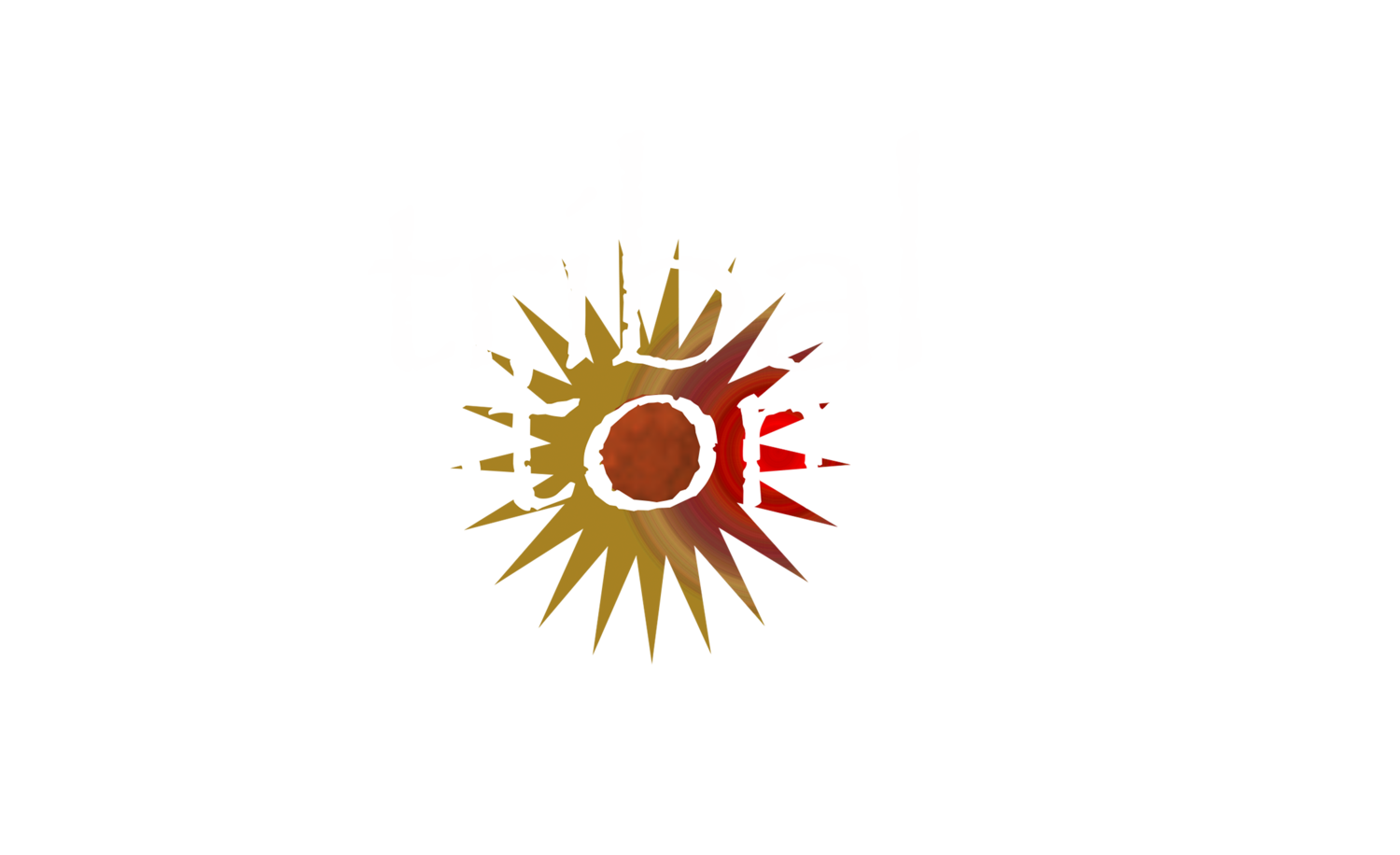 Tribal Stomp Chicago