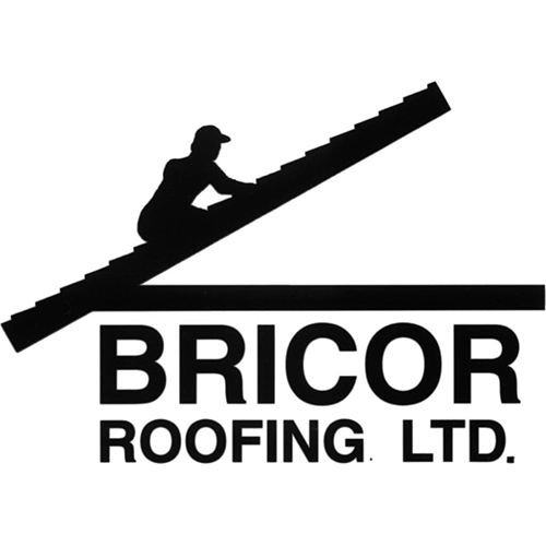 Bricor-logo_opt.jpg
