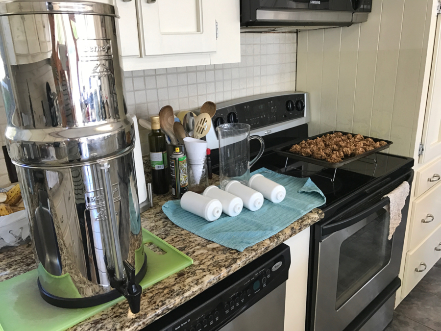 Berkey & Breakfast Cookies