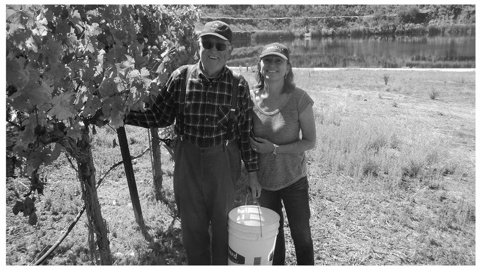 Vidovich Vineyards - Santa Cruz, CAPictured:Click for producer website