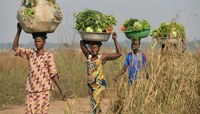 rural farmers