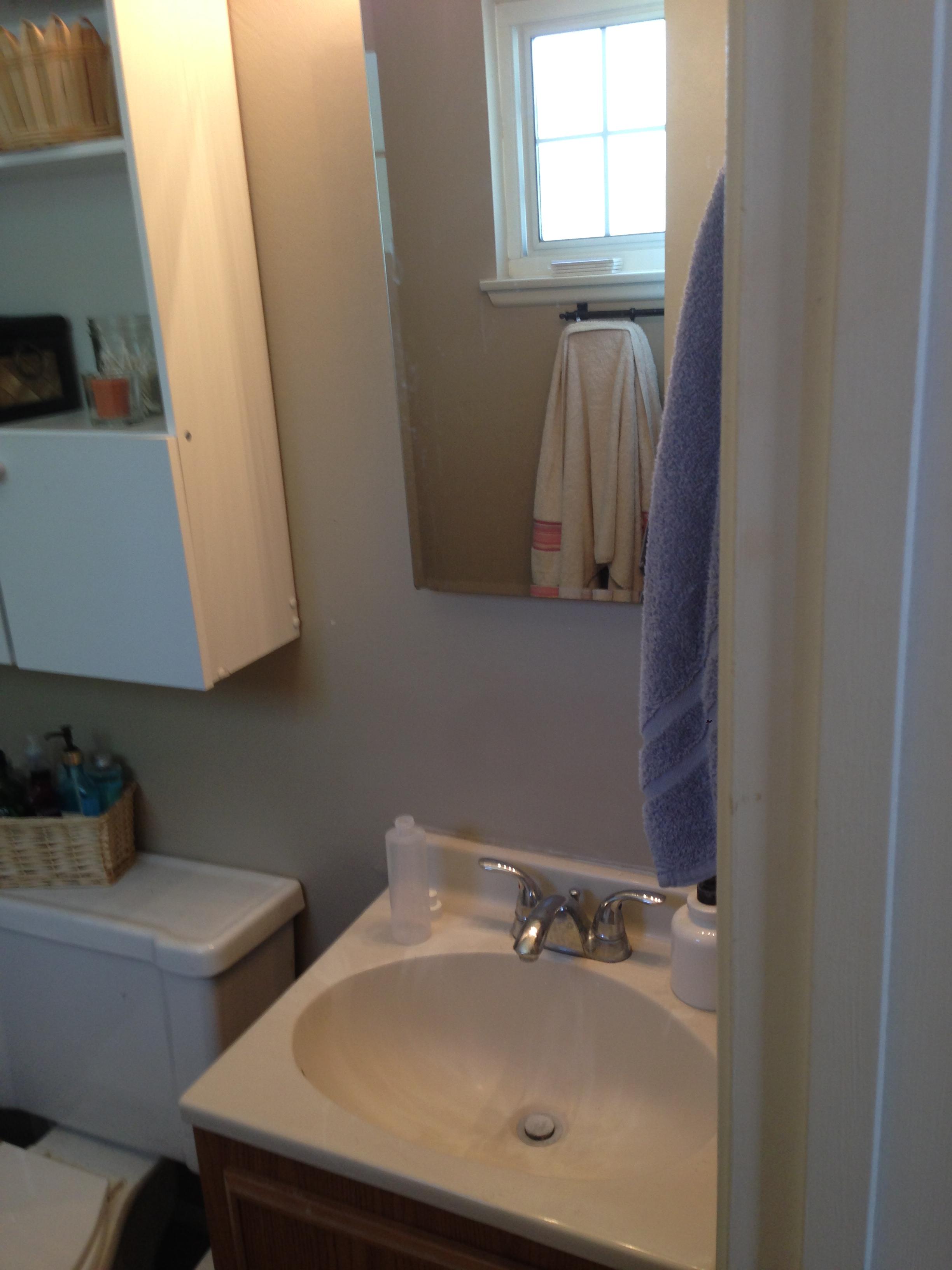 Bathroom Vanity Picture Pre Renovation