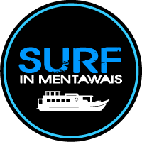 surf-in-ments-logo-final-final-march-rgb.png