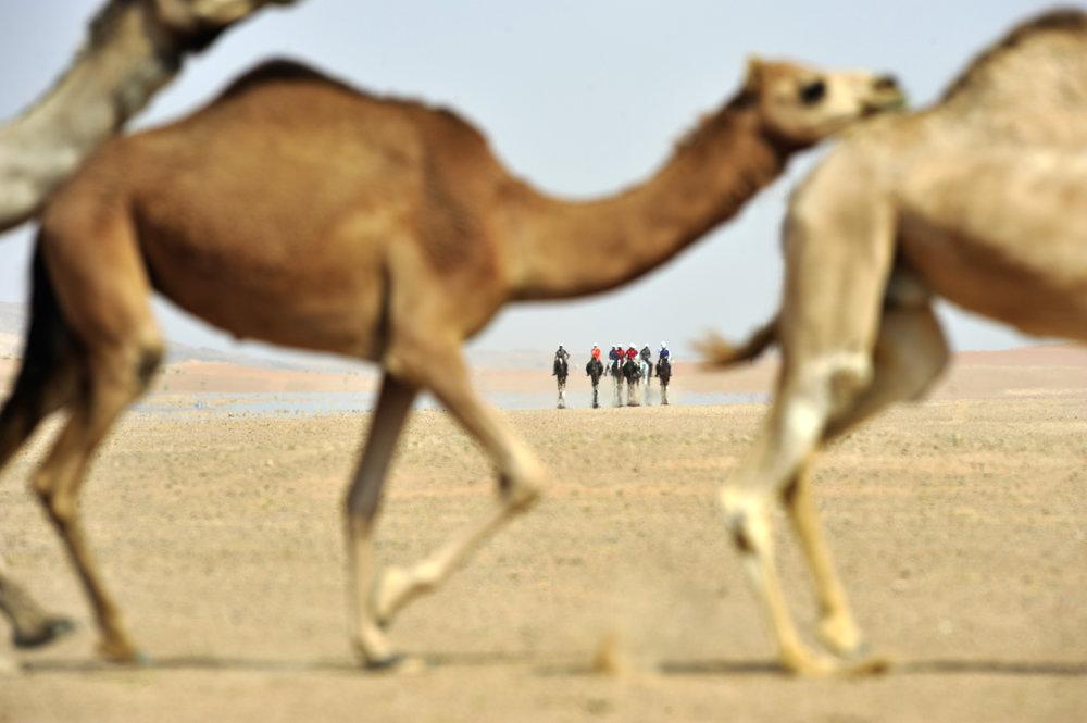 Abdulrahman_052_Alhinai v2.jpg