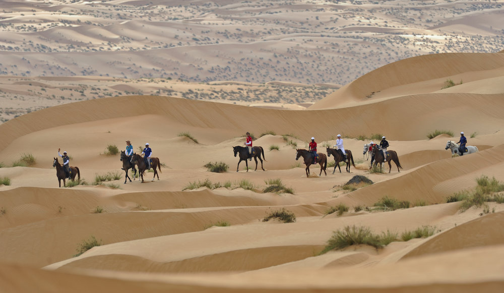 Gallops of Oman 2014