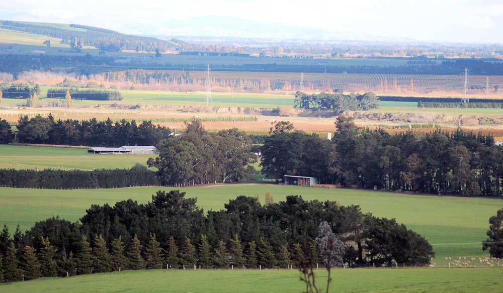 Willowbank 086.jpg
