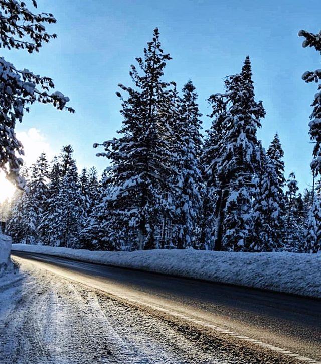 Chicago, please take notes from Lake Tahoe. ☝🏼 #winterwonderland