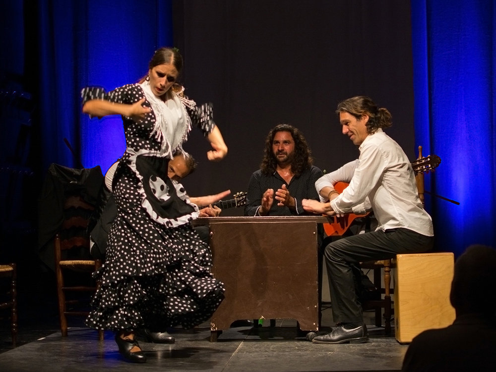 THE FIESTA FLAMENCA -