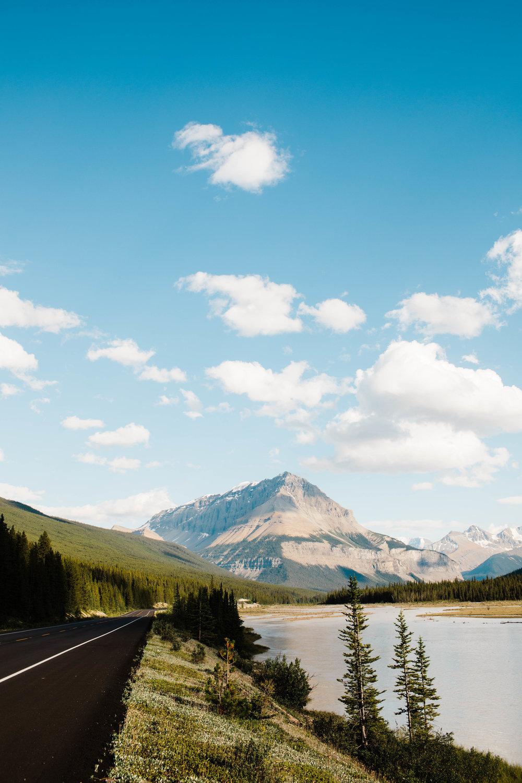 Sheena_Shahangian_Photography_Travel_Banff_Jasper_Glacier_Yellowstone_Grand_Teton-27.jpg